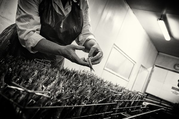 SARDINE WINKEL De sardine delicatesse uit Frankrijk Spanje en Portugal ingeblikt conserven gezond