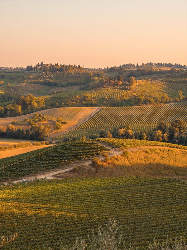 Landschap piemonte tijdens zonsondergang
